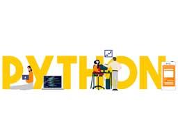 کاربرد زبان پایتون در طراحی سایت